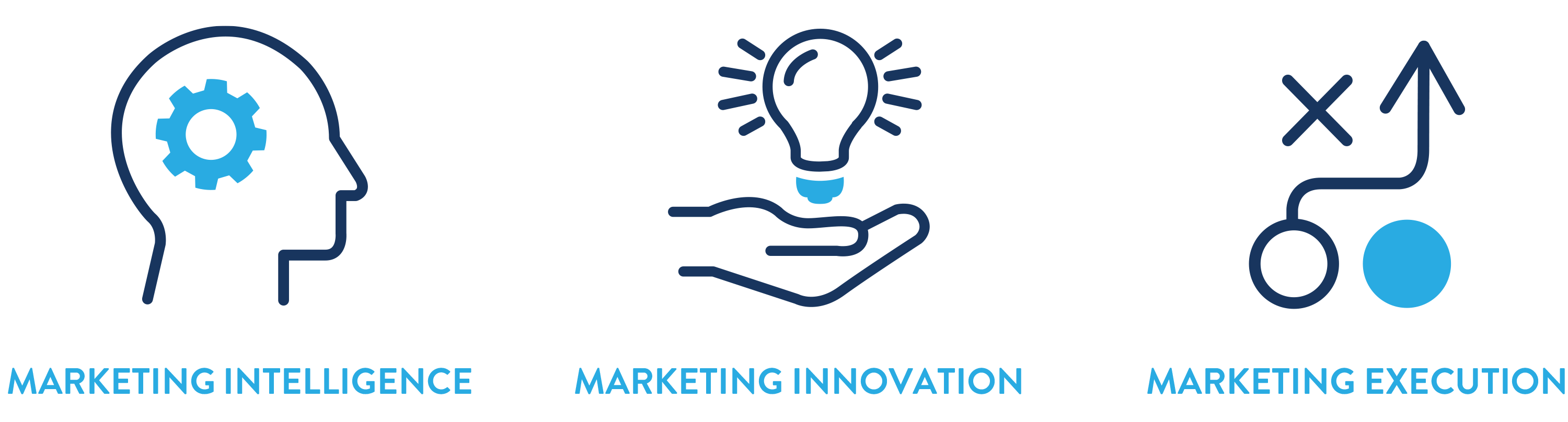 Our three core tenets of marketing intelligence, marketing innovation and marketing execution
